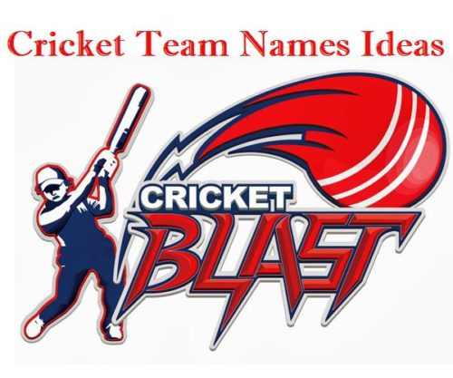 100+ Cricket Team Names For Cricket Tournaments